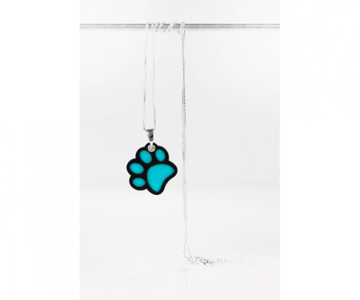 Pendant with silver chain and blue dog footprint